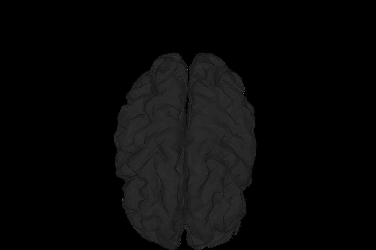 mental-health-3285630_1280